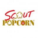 Popcorn Pickup 2017